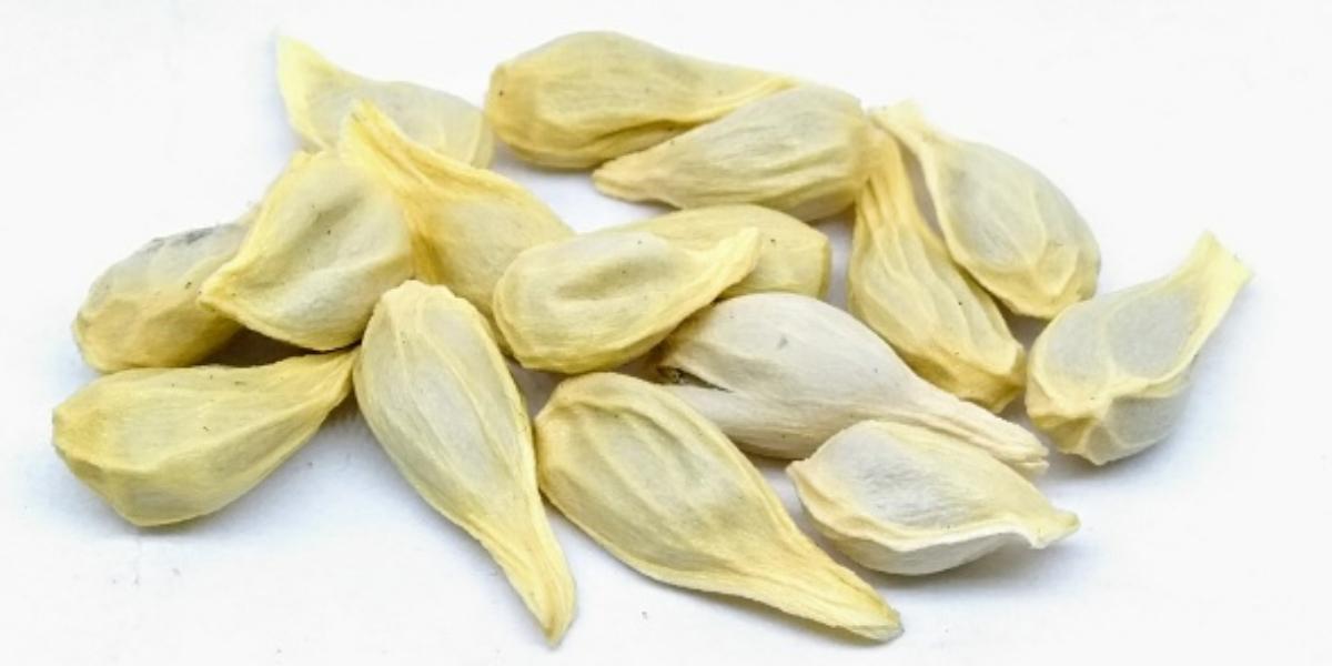 لیموں کے بیج